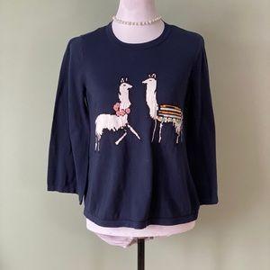 Ann Taylor Llama sweater size medium never worn